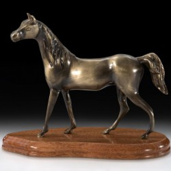 Конь V2492