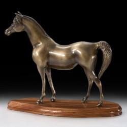 Конь V2493